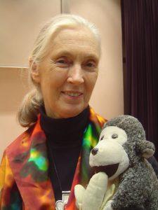 Jane Goodall mit einem Stoffaffen (CC BY 2.5/Jeekc)