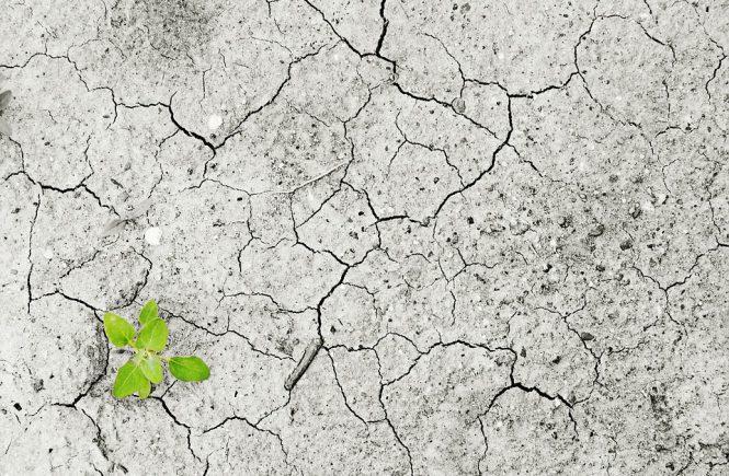 Flucht, Migration, Klimawandel – Und was haben wir damit zu tun? von Merle Becker